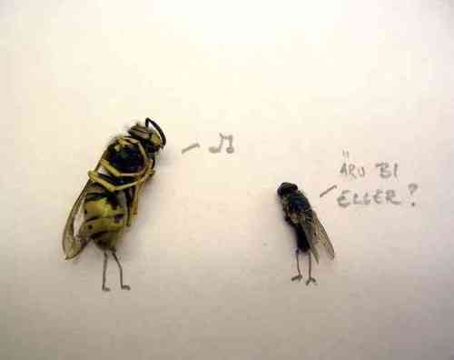 dead_flies_art_09