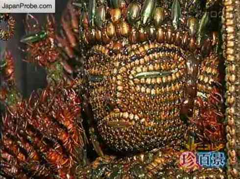 bug-buddha-3