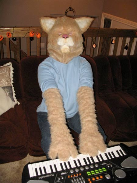 keyboard-cat-costume