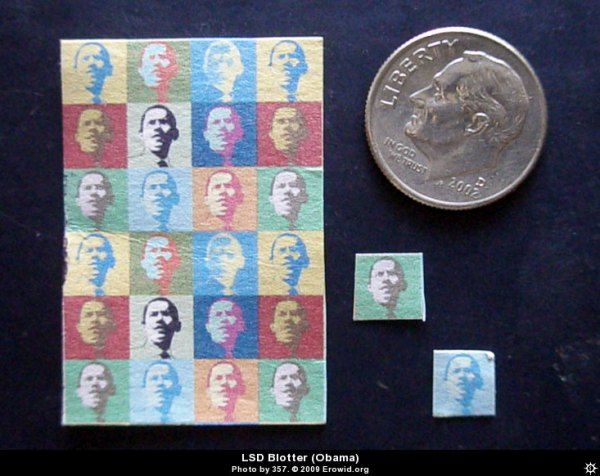 http://cakeheadlovesevil.files.wordpress.com/2010/04/lsd_blotter_obama__i2009e0716_disp.jpg?w=600&h=476
