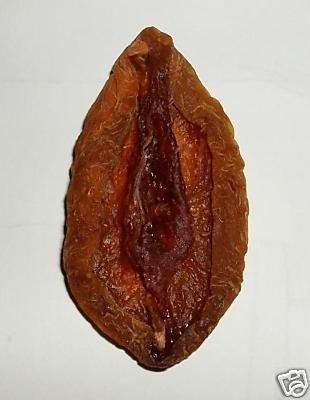 Hello? - Page 2 Dried-peach-vagina-4060-1232261362-0